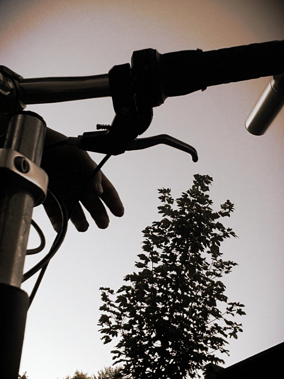 Rower o zachodzie słońca
