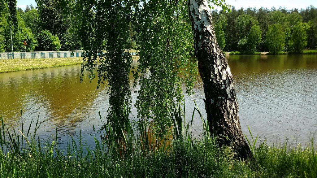 Relaks wśród natury